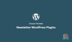 It's Time To Choose The Best Newsletter WordPress Plugins