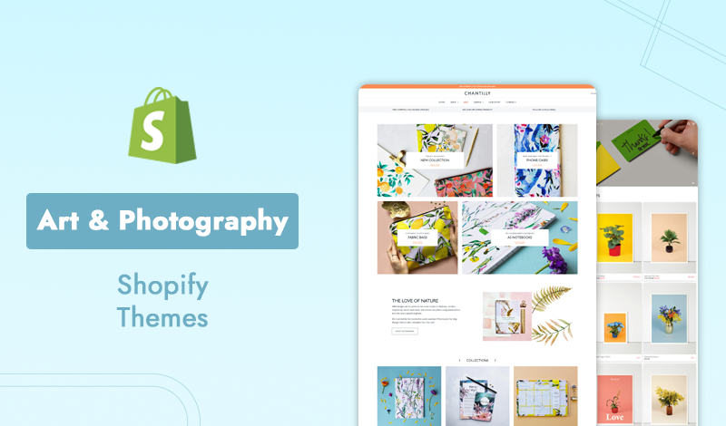 Top 5 Premium Art & Photography Shopify Themes For Your Store